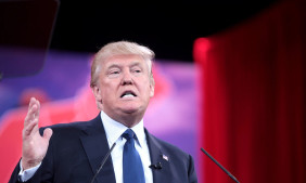 Donald Trump nehmen